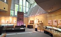 北区飛鳥山博物館 館内